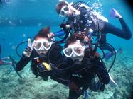 【ブセナリゾート発】世界屈指の高級リゾートで極上のボート体験ダイビング