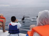 鯨&お客様1