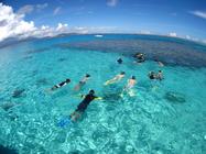 極上のサンゴ礁ポイントへご案内!